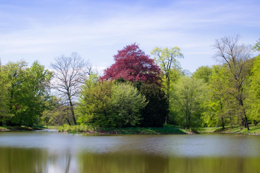 le grand lac dans le parc de gotha