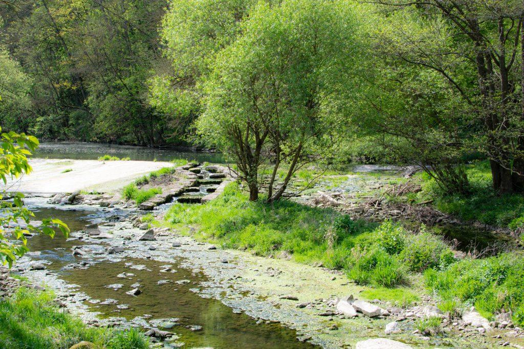 rivière rothenburg