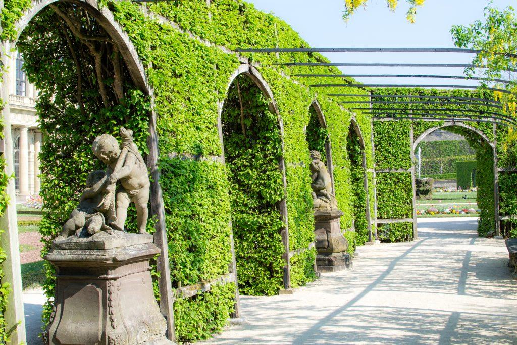 jardin de la residenz wurzburg