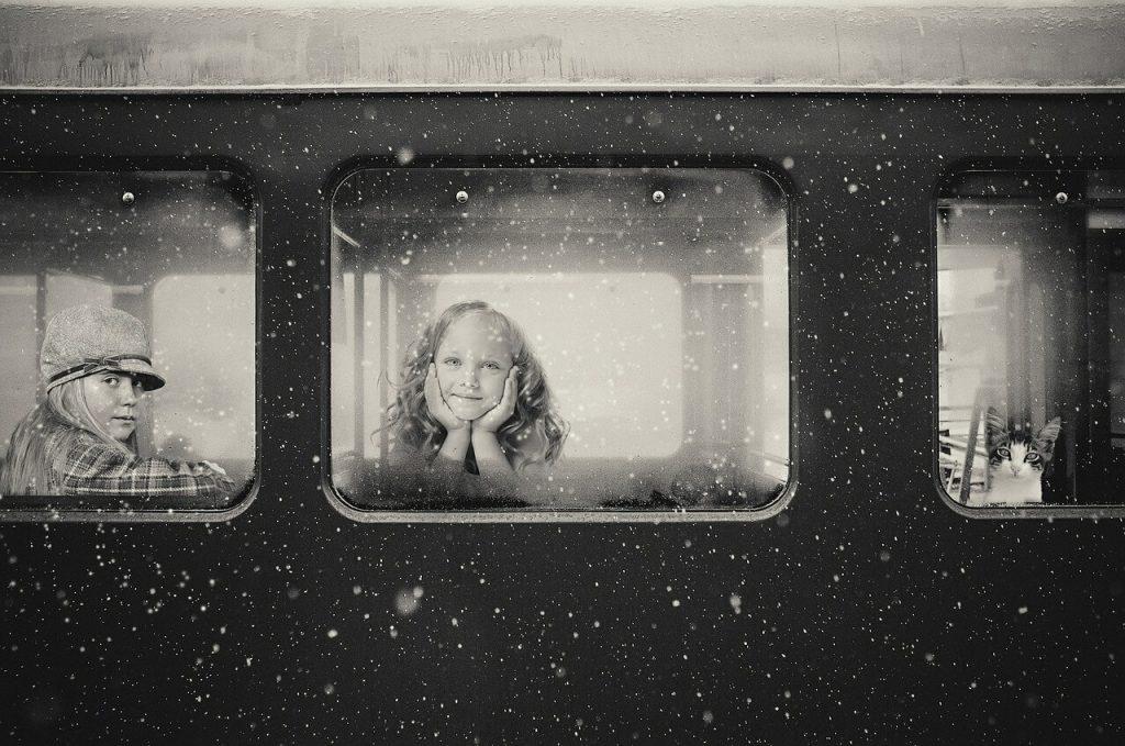 animal de compagnie dans le train Allemand